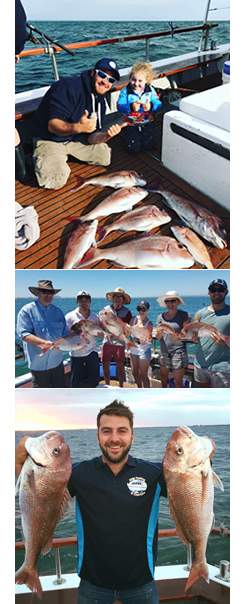 Able fishing Charters Fishing Charters in Williamstown Melbourne